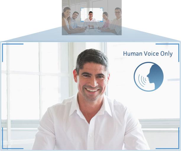 AVer Voice